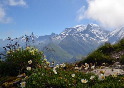 paysage-de-montagne